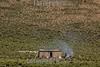 Argentina : Biosphere reserve Cuenca de Pozuelos , Puna, Jujuy province / Argentinien : Biosphärenreservat Cuenca de Pozuelo s, Puna , Provinz Jujuy © Silvina Enrietti/LATINPHOTO.org