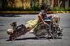 Mexico : imagen captada en municipio de cuautitlan izcalli , estado de mexico . un hombre discapacitado, recoje botellas de plastico para venderlas y ganarse un poco de dinero, lo acompanan dos pequenos perros / Mexiko : Mann im Rollstuhl mit Hund - Armut © Omar Lopez/LATINPHOTO.org