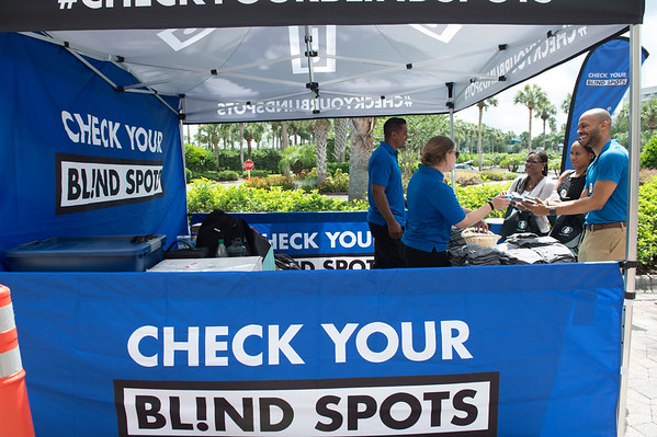 Check Your Blind Spots - 001
