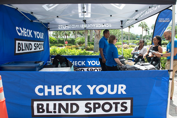 Check Your Blind Spots - 002