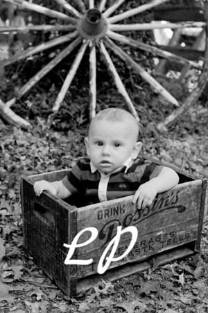 Max 6 Months (6 of 38)