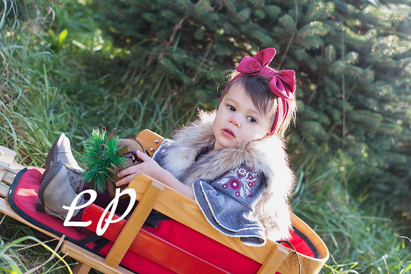 Wallace-Smith Family Christmas 2018 (12 of 28)