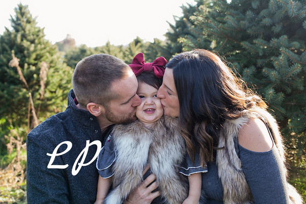 Wallace-Smith Family Christmas 2018 (8 of 28)