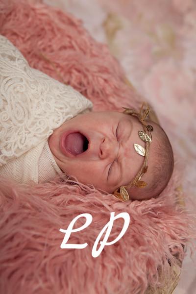 Lola Newborn (4)