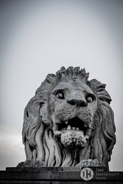 Széchenyi Guardian Lion