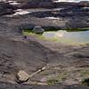 2 large rocks -  erratics?
