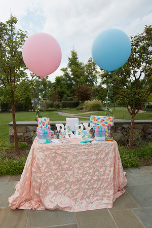 2019 08 Aakriti and Gaurav Baby Shower 006_B3A8197