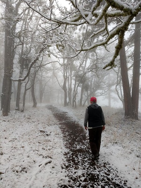 On the snowy Ponderosa Trail, Prescott Park, Oregon