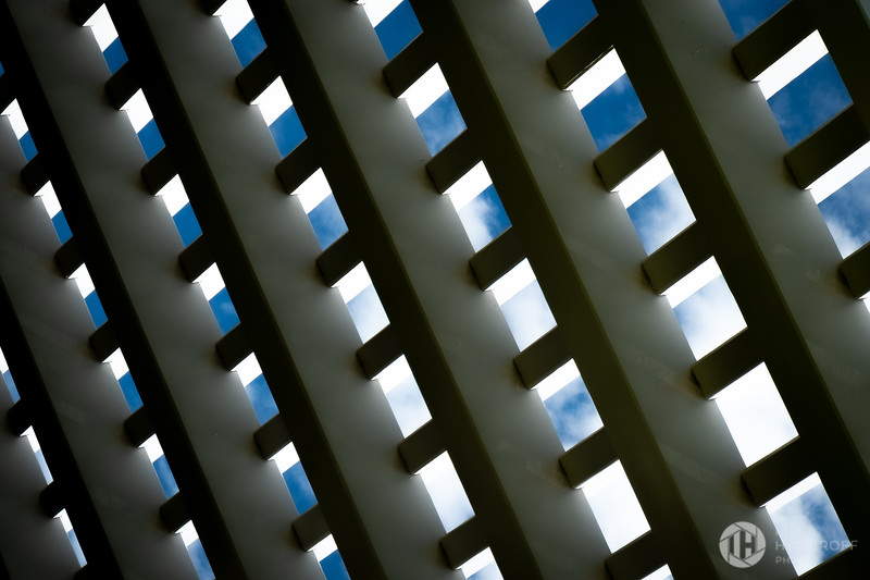 Lattice IV