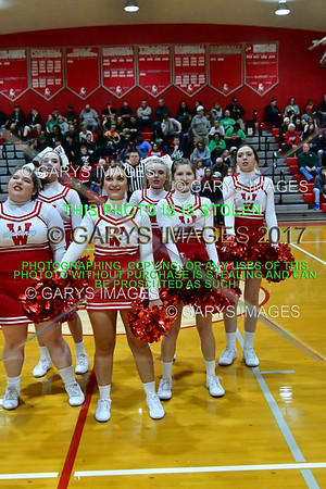 0393WHS V HUNTINGTON _G_CHEER-01072020
