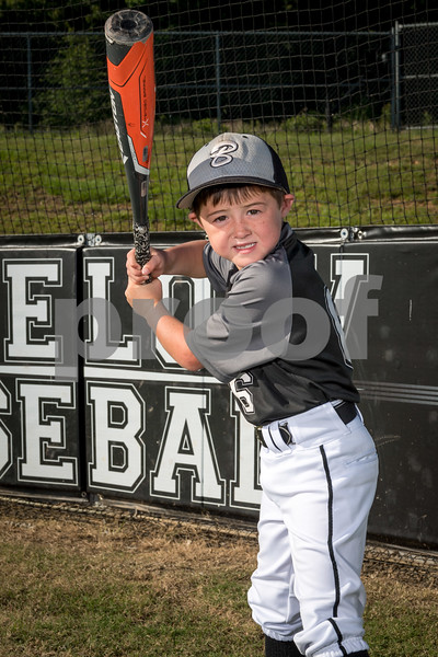 Photo team and individual pictures of Bigelow 6U and 9U