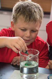 Gr  2 Science Experiment-untitled shoot-YIS_6945-2018-19