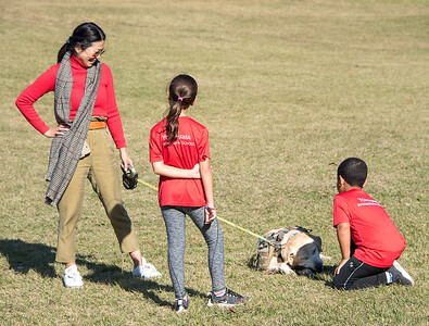 Grade 3 -5 Cross Country Day-untitled shoot-YIS_8278-2018-19