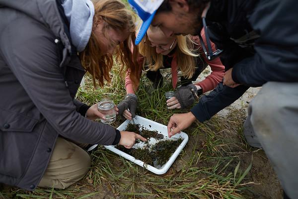 2019 UWL Biology Coon Creek Field Trip Ross Vander Vorste 0086
