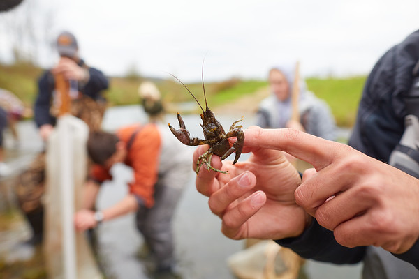 2019 UWL Biology Coon Creek Field Trip Ross Vander Vorste 0093