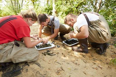2019 UWL Fall Biology Marsh Research0220