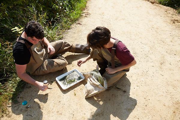 2019 UWL Fall Biology Marsh Research0017