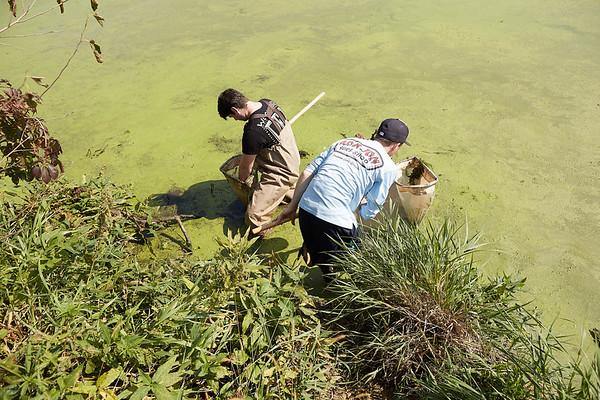 2019 UWL Fall Biology Marsh Research0030