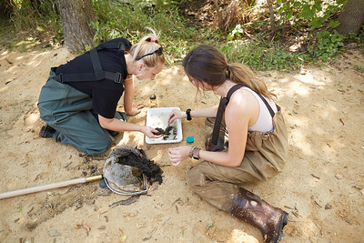 2019 UWL Fall Biology Marsh Research0117