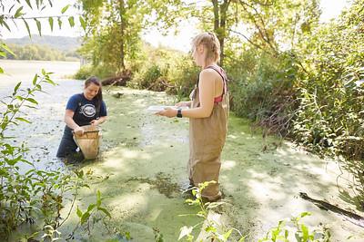 2019 UWL Fall Biology Marsh Research0185