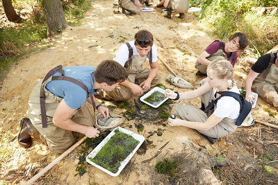 2019 UWL Fall Biology Marsh Research0195