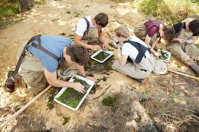 2019 UWL Fall Biology Marsh Research0190