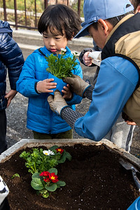 ELC Flower Planting-untitled shoot-YIS_9772-2018-19
