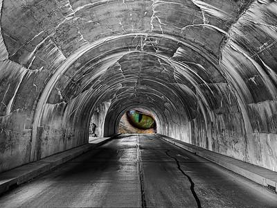 Tunnel Vision - Dave Warren - PSA 9