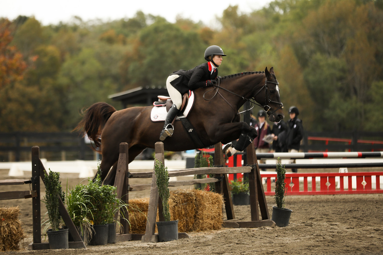Georgia rider Ali Tritschler during a meet against Texas A&M at the UGA Equestrian Complex in Bishop, Ga., on Friday, Oct. 25, 2019. (Photo by Tony Walsh)