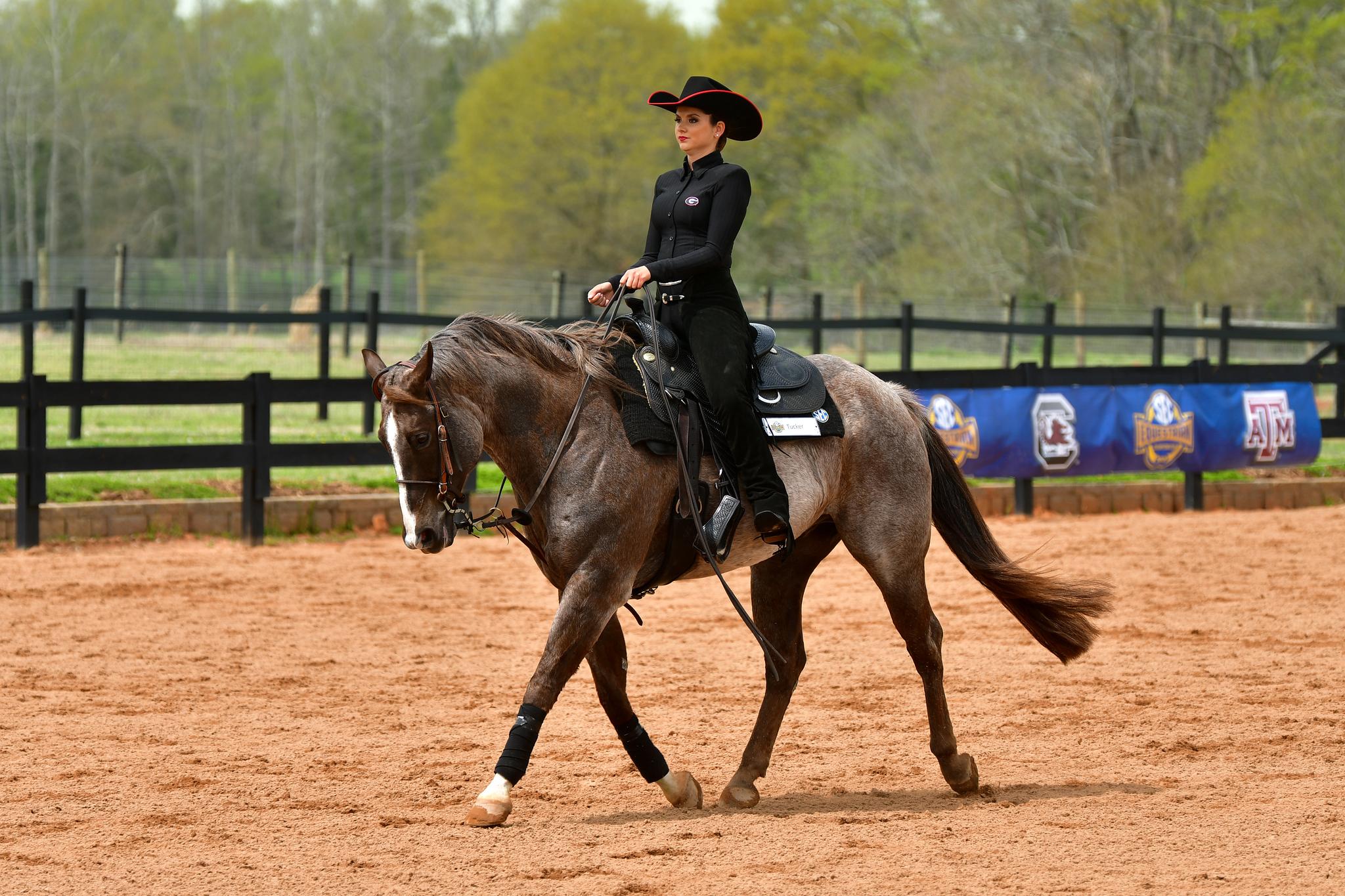 Georgia during the 2021 SEC Equestrian Championship in Bishop, Ga., on Saturday, March 27, 2021. (Photo by Rob Davis)