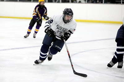 20200202 Hockey - Lakewood v Twinsburg