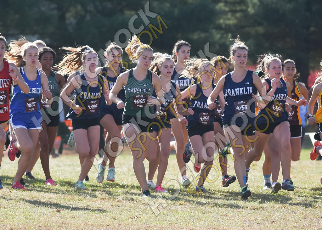 FHS girls cross country at the start (HockomockSprots.com photo)