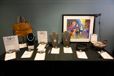 2019 AACCFL Eagle AwardsLobby Reception and Auction - 004