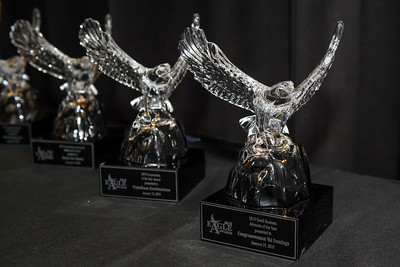 2019 AACCFL Eagle Awards Environmentals - 001