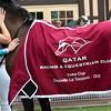 Akoya Blanket