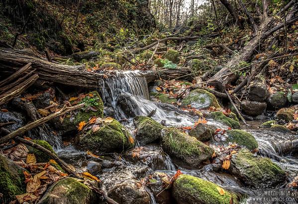 Rocks in Fall  Photography by Wayne Heim