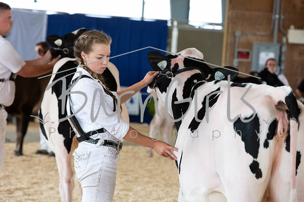 2019  Barrie Fair Dairy 4-H