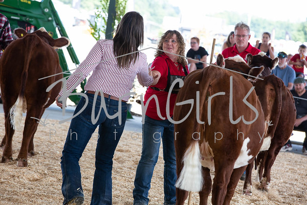 2019 Barrie Fair - Hereford Mark of Excellence Show