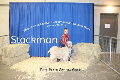 2019 Crockett County Stock Show