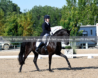 GSD 19 Ellexus Knight 5279