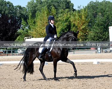 GSD 19 Ellexus Knight 5278