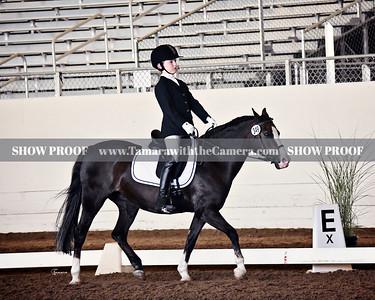 GSD 19 Emily 5503