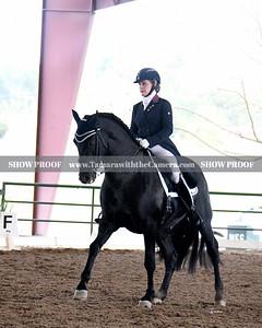 GSD 19 Ebano BRH 5458