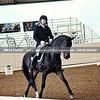 GSD 19 Sandro Paix 3460