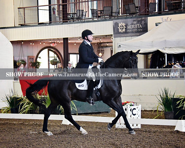 GSD 19 Sandro Paix 3481