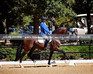 SVE 19 Espartaco Los Arcos 239