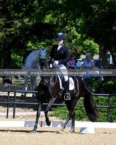 SVE 19 Ellexus Knight 013