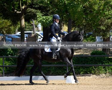 SVE 19 Ellexus Knight 018