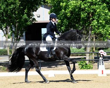 SVE 19 Ellexus Knight 011