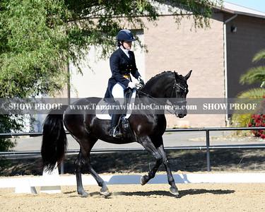 SVE 19 Ellexus Knight 009